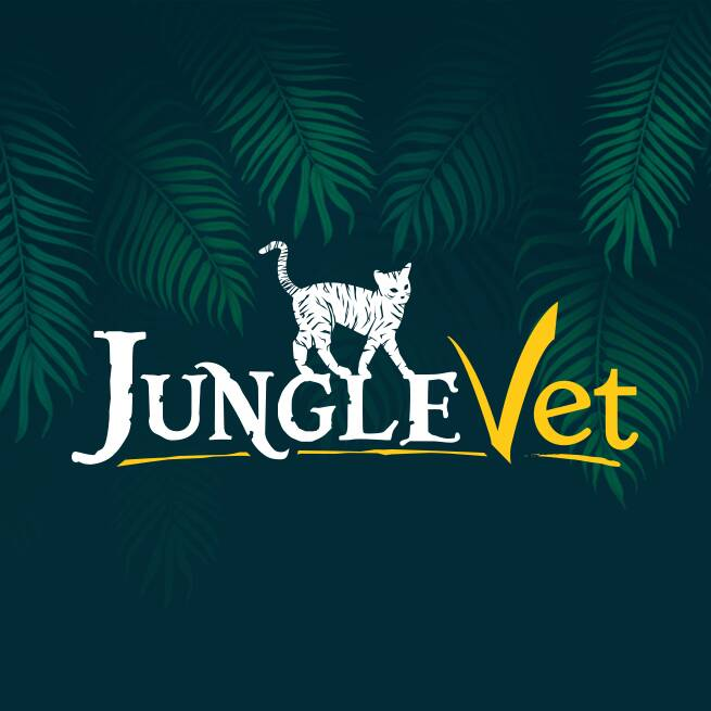 Junglevet Creation Logo Direction Artistique